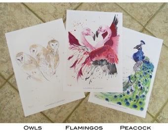 A3 Poster Prints - Birds