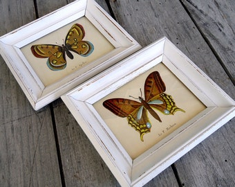 Vintage Butterfly Art Prints Framed Wood Wooden White Distressed Rustic Wall Decor Butterflies  Set