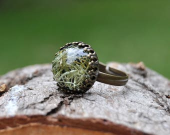 Botanical Ring with Real Lichen, Green Lichen Terrarium Ring, Eco Resin Ring Gift for Nature Lover, Botanical Jewelry Birthday Gift for Her