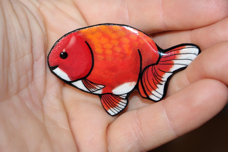 Ranchu Magnet: great gift for Goldfish lovers for locker