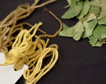 Natural Dye Kit - birch leaves yellow - organic wool - dyeing with plant dyes