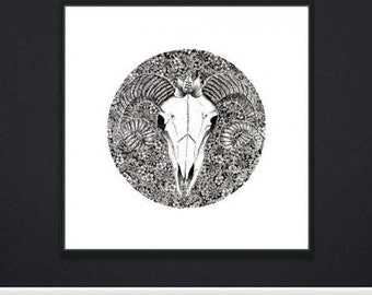 Limited edition hand drawn floral print: 'Enlightenment'