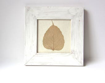 Vintage Framed Leaf Art