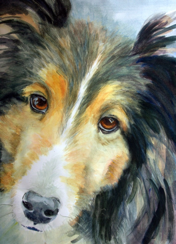 Custom pet portraits - pet portraits - dog portraits - watercolor pet portraits - pet painting - custom dog paintings - animal portraits