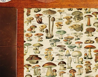 Vintage mushroom, vintage style papers for wrapping, scrapbooking, or paper crafting!
