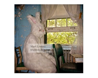 Creepy White Rabbit Costume 5x5 Inch Photography Print, Weird Small Wall Art, Easter Bunny, frighten