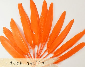 10pcs - ORANGE - Large Duck Quills - Stiff loose feathers
