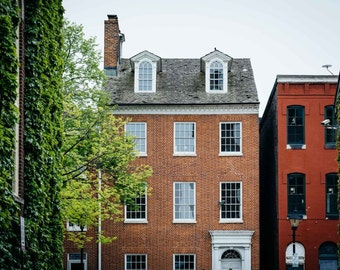 Trees and historic houses in Fells Point, Baltimore, Maryland. Photo Print, Metal, Canvas, Framed.