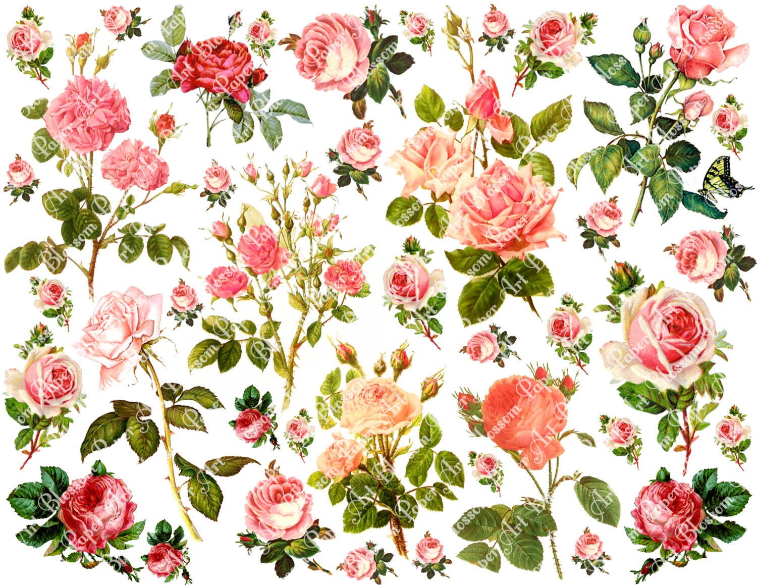 Scrapbook flowers image collections handicraft ideas home decorating pink roses collage sheet digital flowers scrapbooking mightylinksfo