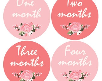 Baby Miletsone stickers, Pink stickers, Baby girl monthly, baby monthly sticker, Onesie stickers, baby shower gift, Vintage stickers A105