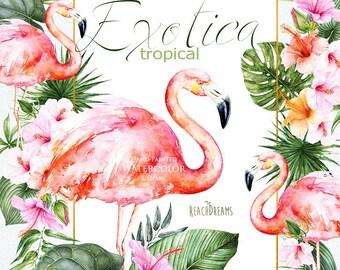 Watercolor Flamingo, Flowers, Leaves, Tropical Frames Clipart, Hibiscus, Tropic Floral, Green Foliage, Wedding invitation, Arrangements, png