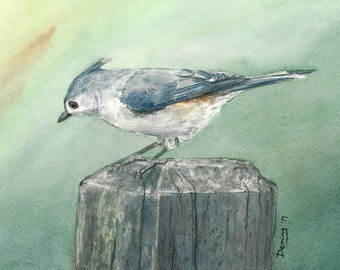 Titmouse - Watercolor Print - Art Print - Watercolor - Young Titmouse - Bird Print - Bird Art
