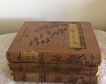 Collection of Antique Victorian poetry books includes victor hugo