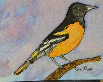 Original ACEO Watercolor Painting - Baltimore Oriole - Pen and Ink Art