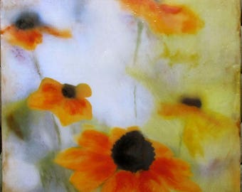 Encaustic photography - Daisies, original encaustic art, mixed media