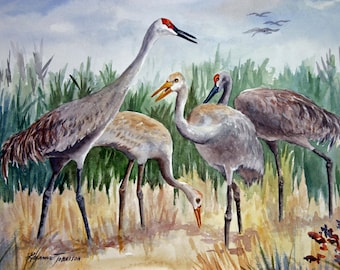 Great Blue Heron  or Sandhill Crane 11/15, Watercolor, U pick 1, Florida Birds Home Decor,Nature