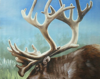 Caribou original oil on canvas wildlife painting 24x20 by RUSTY RUST / C-70