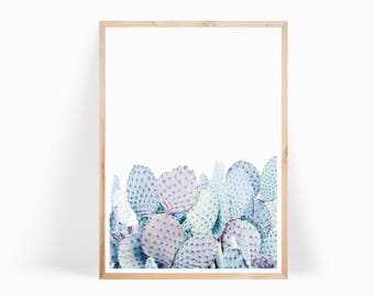 Pastel Cactus Print - Desert Print - Cactus Photo - Prickly Pear Print