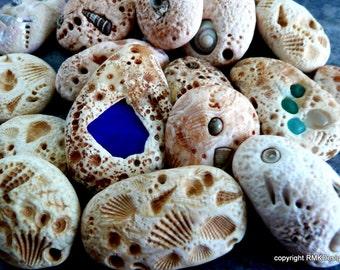 Polymer Clay Tutorial---Limestone Fossils