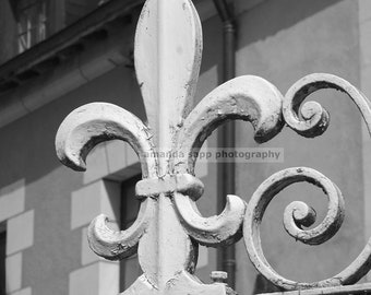 Paris fleur de lis  black and white photograph