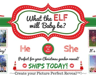 What the Elf Gender Reveal | Christmas Gender Reveal Ideas | Funny Gender Reveal | Confetti Cannon | Confetti Popper | Smoke Bomb Alt Idea