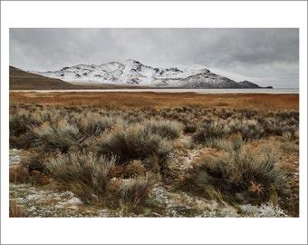Antelope Island - Salt Lake City - Utah - Color Photo Print - Fine Art Photography (SLC01)