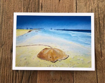 Stingray on Saadiyat Beach - a greetings card from an original oil painting by Claire Sims-Craddock
