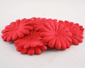 Red Blooms Pbc146