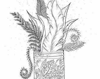 Botanical Jardin Original Illustration