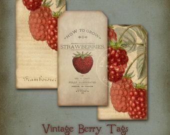 Vintage Berries Tags Digital Download