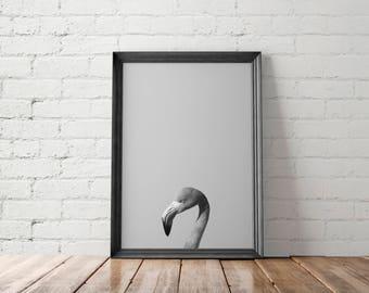 Flamingo Art Print, Flamingo Printable, Flamingo Wall Decor, Flamingo Wall Art, Nursery Decor Art Print, Peekaboo Printable, Animal Wall Art