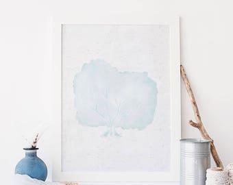 Hamptons Style Art, Sea Fan Coral, Printable Coastal Decor, Printable Wall Art, Bathroom Decor, Beach Poster, Digital Files, Coral Print