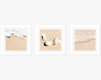 Set of 3 / 12x12 / Beach / Sand / Summer / Surf / Neutral / Florida / Fine Art Print