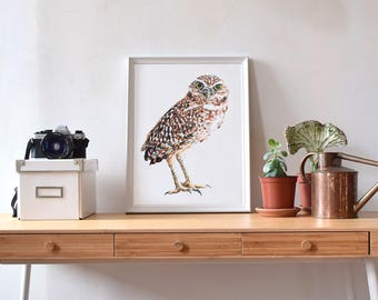 Owl Print Watercolor, Fine Art Painting, Burrowing Owl, Bird-watchers, Bird-lovers, Naturalist