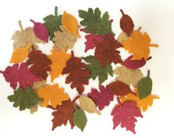Felt Autumn Leaves 5 Colors