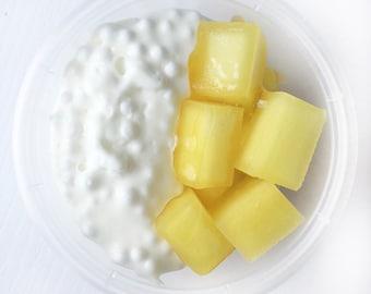 Mango Sticky Rice Slime
