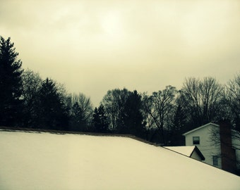 nature photography, landscape photo, winter trees, sky, Michigan houses, snow, snowy, silhouettes, black and white art, wall print, lonely
