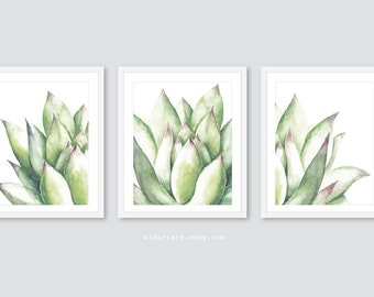 Succulent Art, Succulent Wall Art, Cactus Print, Cactus Wall Art, Succulent Print - Set of 3 Prints - Frames not included - 5x7 or 8x10