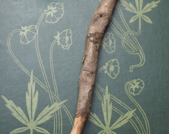 RARE Knotted Beech Root Wand Pendant - Knowledge - For Pagans, Wiccans, Witches, Travel Wand