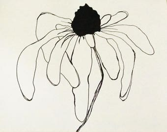 Daisy Flower Line Drawing : Daisy drawing pen and ink sketch illustration black