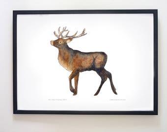 Printable Stag art