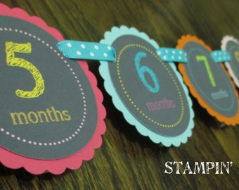 Chalkboard Doodle Collection: Monthly First Birthday Photo Banner. Chalkboard Banner. Picture Banner. First Year Banner.