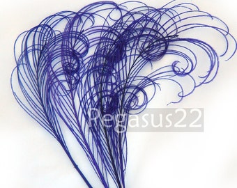 ROYAL PURPLE Peacock curled feather sprigs (5 -8 Inches)(4 or 12 SPRIGS)  plumes for hats,fascinators,costume headdress,brooch bouquet