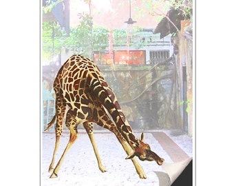 Giraffe Art Print Giraffe turns page illustration beautifully upcycled dictionary page book art print