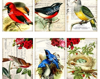 Bird Tags Digital Collage Sheet with Red Blue Birds Nest Eggs Vintage Backgrounds Junk Journals Decoupage Papers Printable