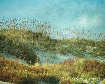 Beach Photography - Ocracoke Sea Oats - 8x12 fine art print - sand sky clouds aqua blue green gold tan beige home decor