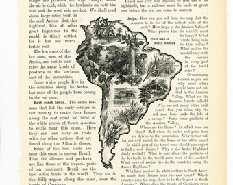 South American vegetation encyclopedia art print  1920s South America map print Latin America map plant map  : Vintage 1920s old book plate