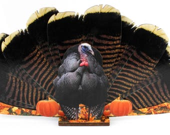 Turkey Coasters #8201