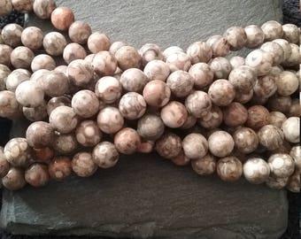 8mm Natural Fossil Crinoid Gemstone Beads Round Full 15 Inch Strand