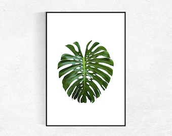 Monstera Leaf Photography PRINT, Leaf Poster, Large Wall Art, Botanical Print, Banana Leaf, Plant Wall Art, Tropical Decor
